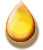 Island Biodiesel Co-op