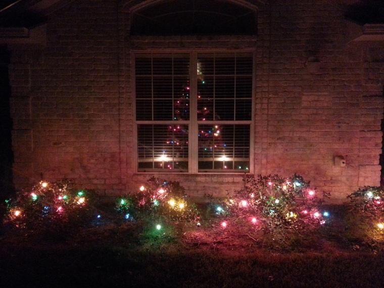 Christmas 2015 Tree and lights outside 2.jpg