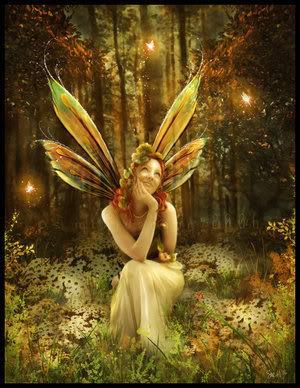 Woodland Fairy.jpg