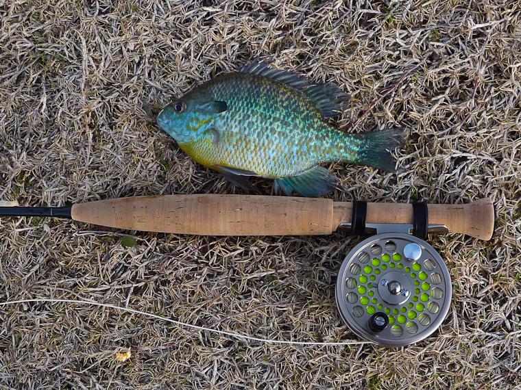 Ultralight fly fishing favorite light reel for Ultralight fly fishing
