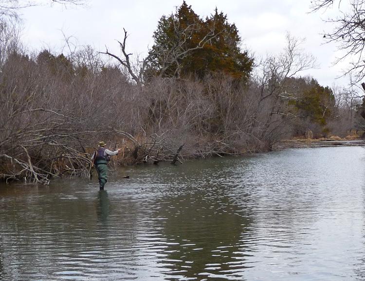 Ultralight fly fishing the blue river oklahoma for Fly fishing oklahoma