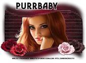 Purrbaby