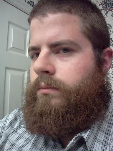 Almost 5 Months Been A While Beard Board
