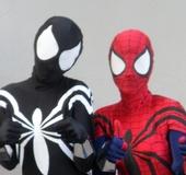 Social Spider