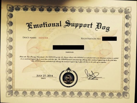 emotional support dog - veterans benefits network