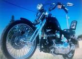 HarleySpringer99biker