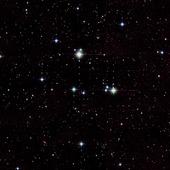 Wanderer Star