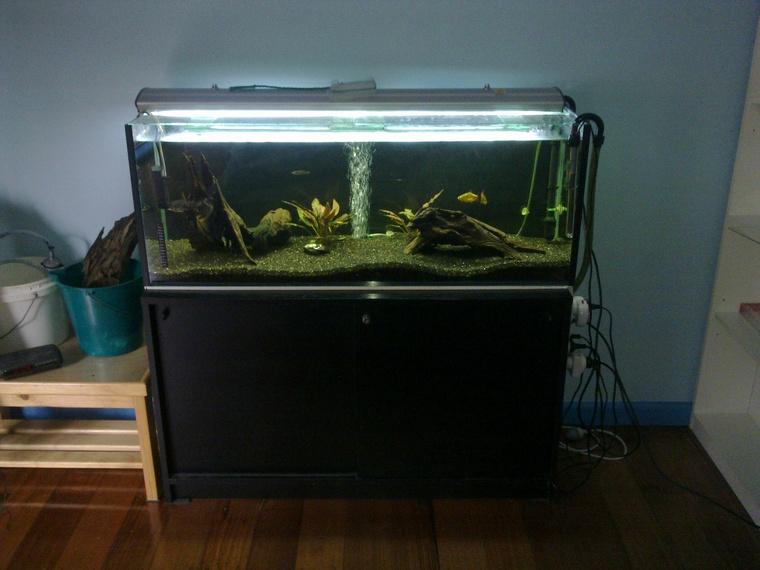 PRICEDROP- Standard 4ft Tank & Cabinet (pic) - Boronia Aquarium ...