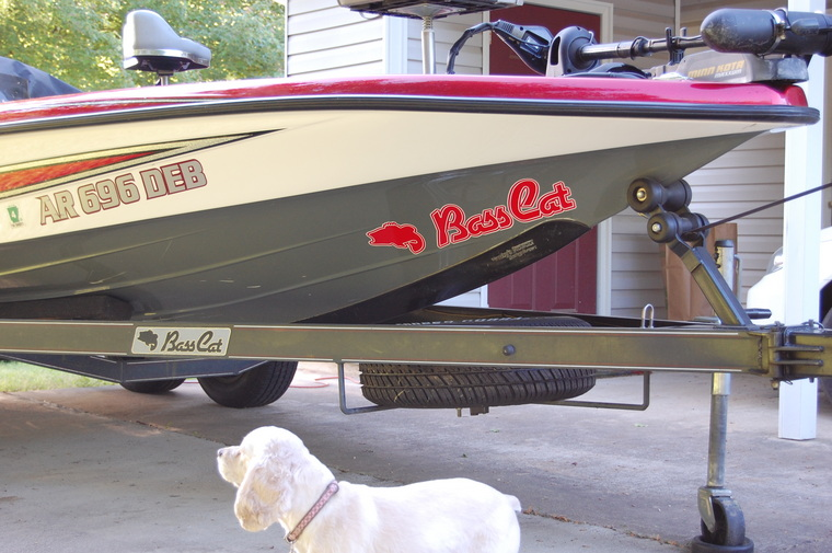Hull Decals On Pantera Classic In BassCat Boats Forum - Hull decals
