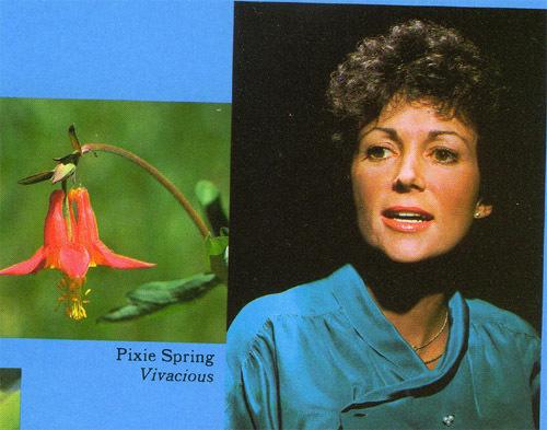 pixie spring copy.jpg
