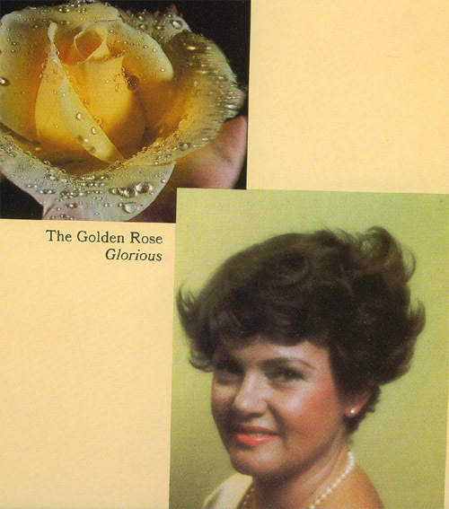 golden rose copy.jpg