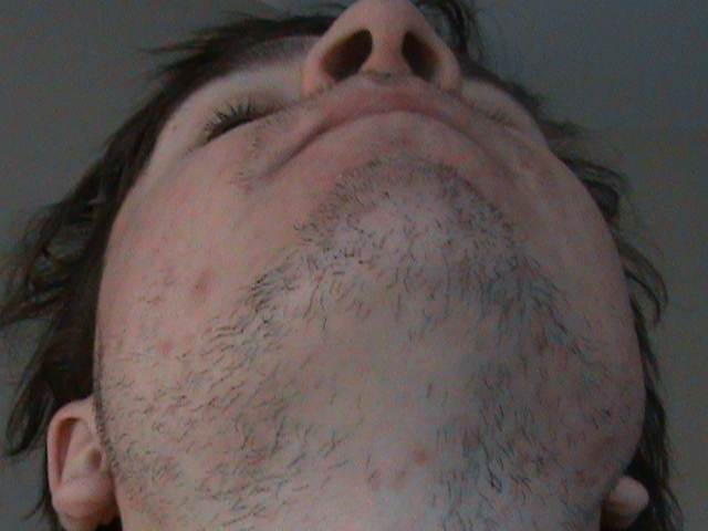 Free shemale anus porn pics