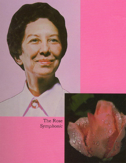 the rose copy.jpg